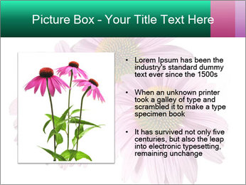 0000079466 PowerPoint Templates - Slide 13