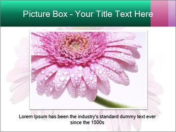 0000079466 PowerPoint Template - Slide 15
