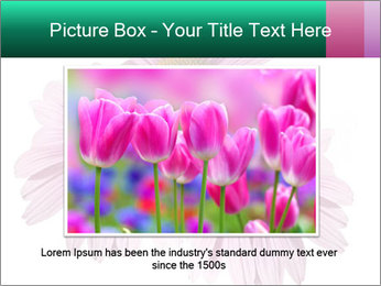 0000079466 PowerPoint Template - Slide 16