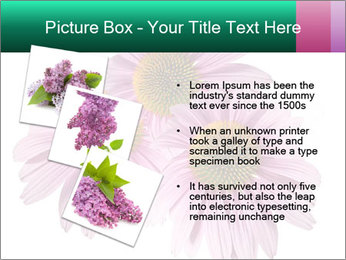 0000079466 PowerPoint Templates - Slide 17
