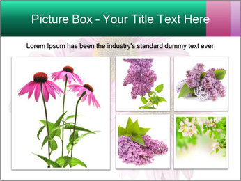 0000079466 PowerPoint Templates - Slide 19