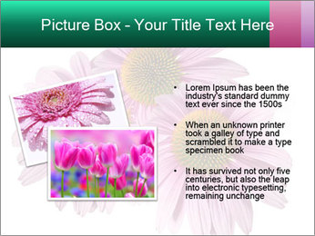0000079466 PowerPoint Templates - Slide 20