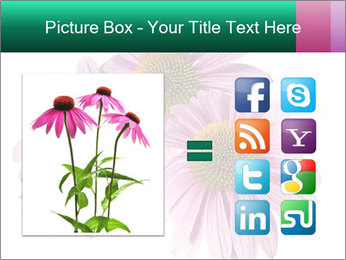 0000079466 PowerPoint Templates - Slide 21