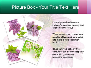 0000079466 PowerPoint Templates - Slide 23