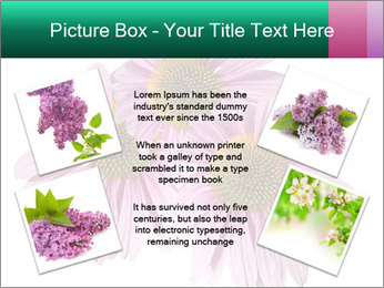 0000079466 PowerPoint Templates - Slide 24