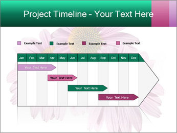 0000079466 PowerPoint Template - Slide 25