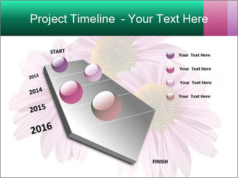 0000079466 PowerPoint Templates - Slide 26