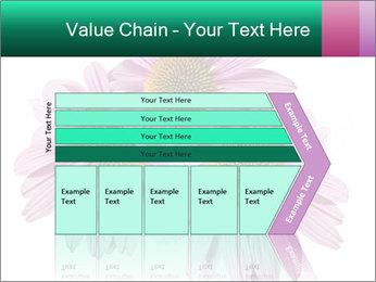 0000079466 PowerPoint Template - Slide 27