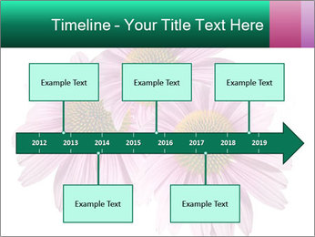 0000079466 PowerPoint Template - Slide 28