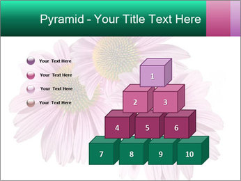 0000079466 PowerPoint Template - Slide 31