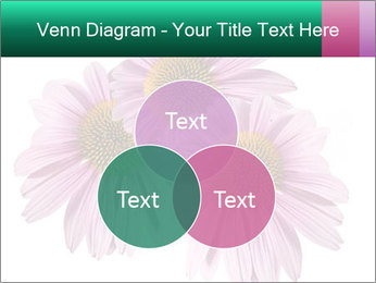 0000079466 PowerPoint Templates - Slide 33