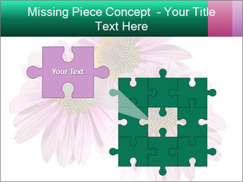 0000079466 PowerPoint Templates - Slide 45