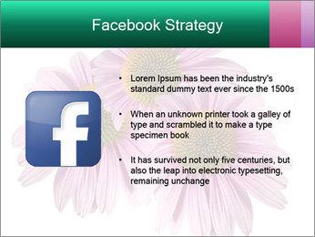 0000079466 PowerPoint Template - Slide 6