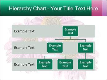 0000079466 PowerPoint Template - Slide 67