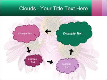 0000079466 PowerPoint Template - Slide 72