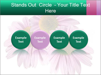 0000079466 PowerPoint Templates - Slide 76