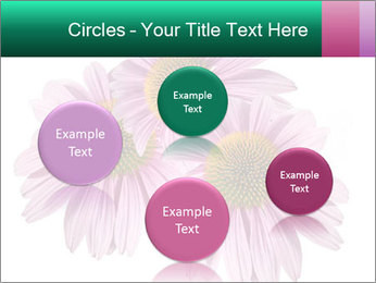 0000079466 PowerPoint Templates - Slide 77