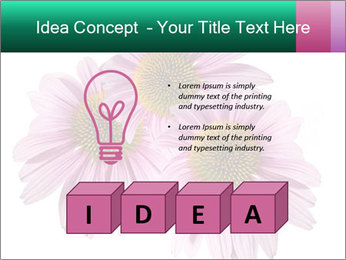0000079466 PowerPoint Templates - Slide 80