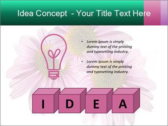 0000079466 PowerPoint Template - Slide 80
