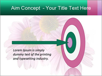 0000079466 PowerPoint Template - Slide 83
