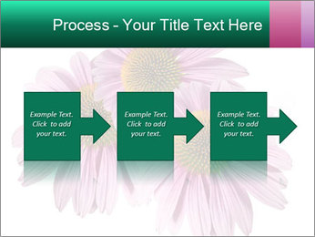 0000079466 PowerPoint Templates - Slide 88