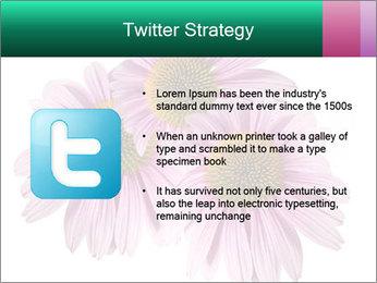 0000079466 PowerPoint Template - Slide 9