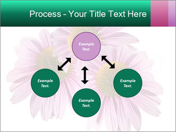 0000079466 PowerPoint Templates - Slide 91