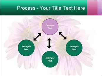 0000079466 PowerPoint Template - Slide 91