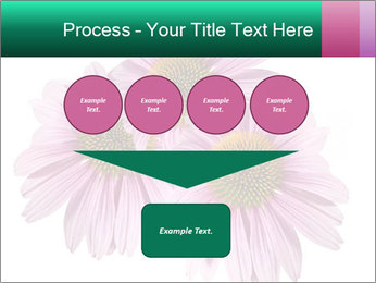 0000079466 PowerPoint Templates - Slide 93