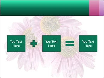 0000079466 PowerPoint Templates - Slide 95