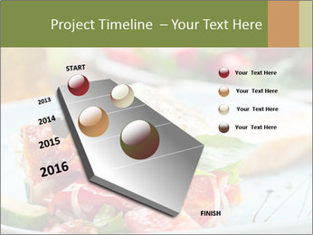 0000079467 PowerPoint Template - Slide 26