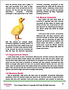 0000079476 Word Template - Page 4