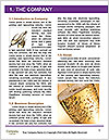 0000079481 Word Templates - Page 3