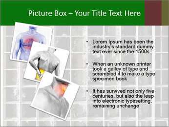 0000079486 PowerPoint Template - Slide 17