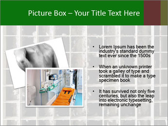 0000079486 PowerPoint Template - Slide 20