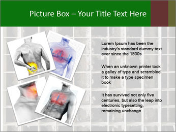 0000079486 PowerPoint Template - Slide 23