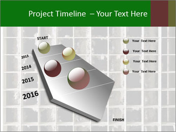 0000079486 PowerPoint Template - Slide 26