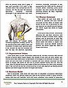 0000079486 Word Templates - Page 4