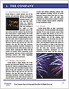 0000079487 Word Template - Page 3