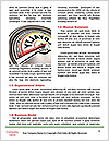 0000079490 Word Template - Page 4