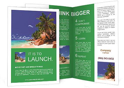 0000079493 Brochure Template