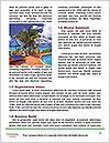 0000079493 Word Template - Page 4