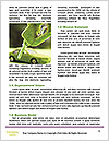 0000079501 Word Templates - Page 4