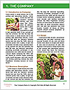 0000079508 Word Templates - Page 3