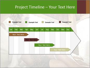 0000079512 PowerPoint Template - Slide 25