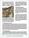 0000079513 Word Template - Page 4