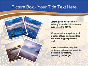 0000079515 PowerPoint Templates - Slide 23