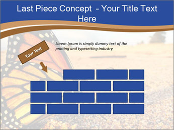 0000079515 PowerPoint Templates - Slide 46