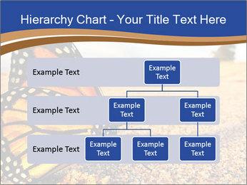 0000079515 PowerPoint Template - Slide 67