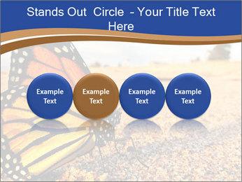 0000079515 PowerPoint Template - Slide 76